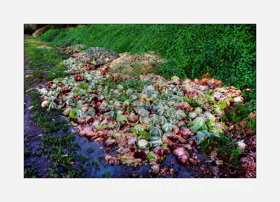 Tomaten-Blumenkohlsalat an dezent grünem Unkraut über giftig anmutender Pfütze