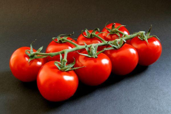 Tomaten - zweireihig