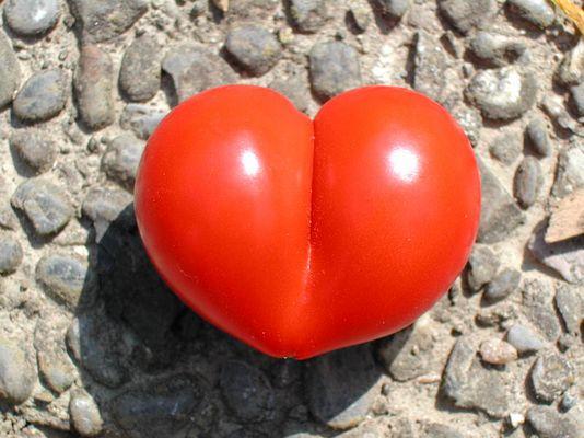 Tomatenherz