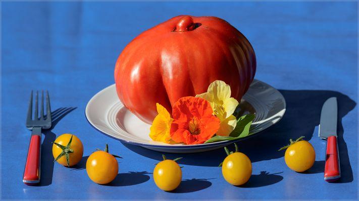 Tomatenmonster