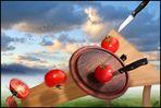 Tomatenschlag