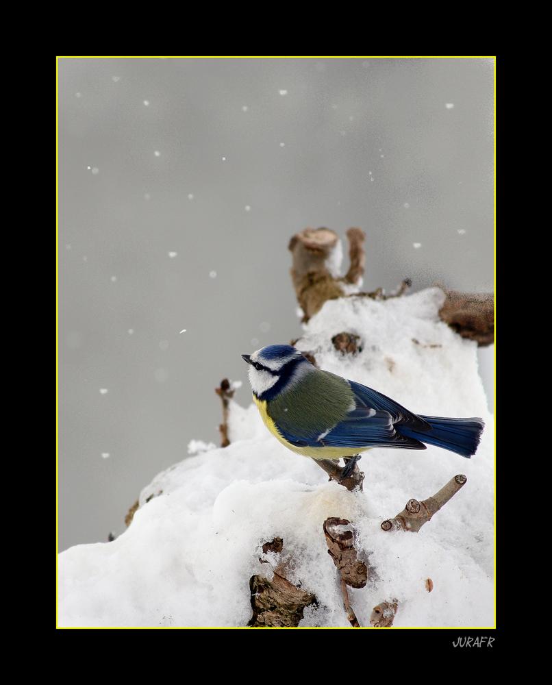 Tombe la neige........