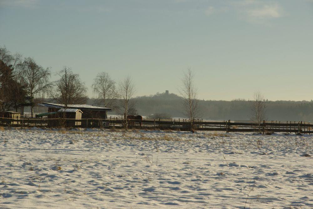 Tomburg, Pferd und Schnee