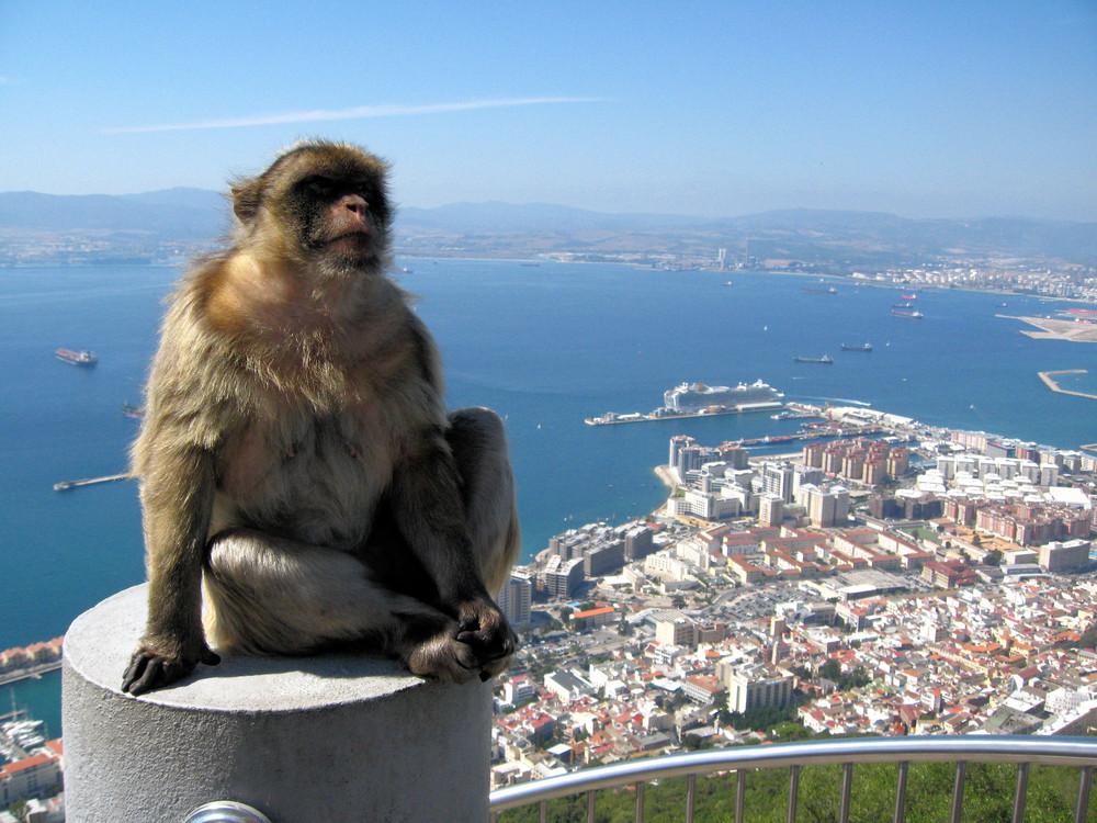 Top of Gibraltar