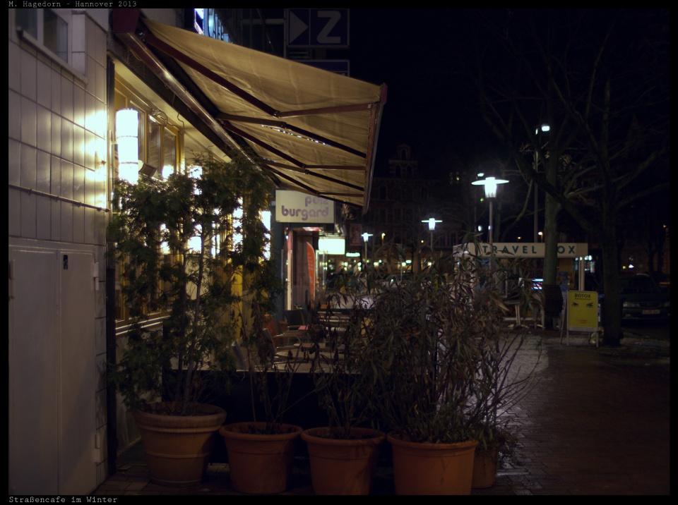 Topfgestrypp vor Straßencafe nebst einem englischen Reisekasten sowie einer Werbung für Giftspritzen