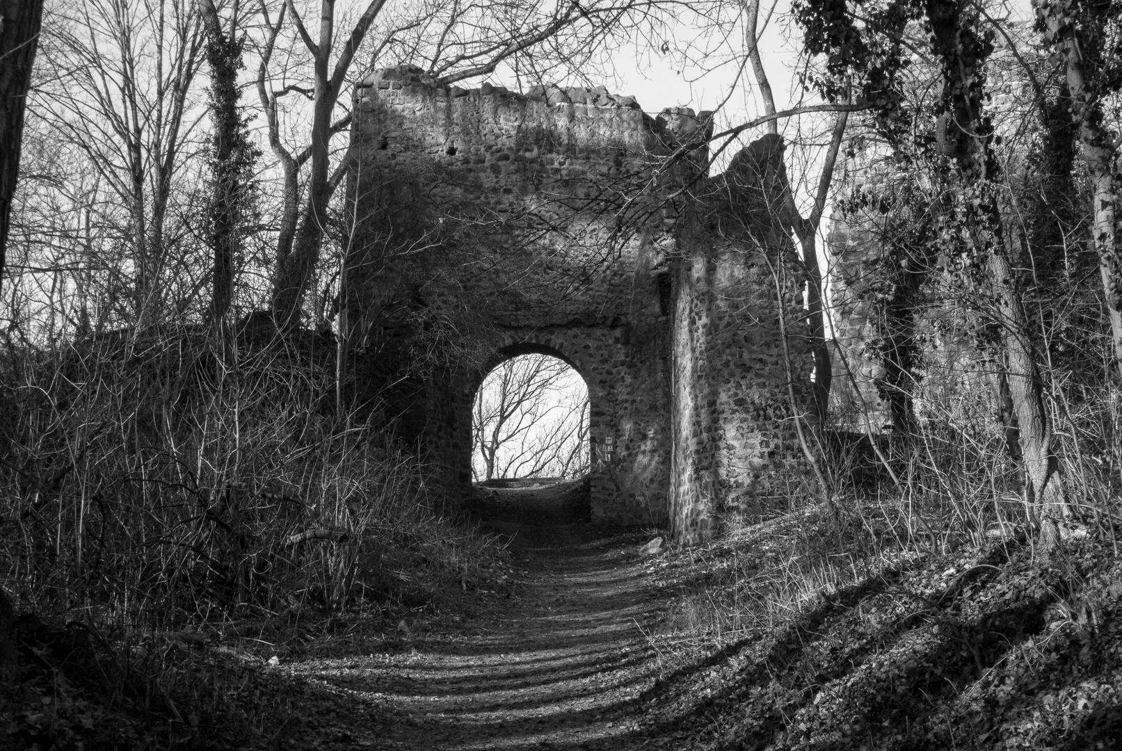 Tor der Burg Kalsmunt