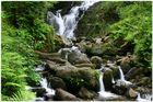 Torc Wasserfall in Killarney (Irland)
