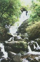 Torc Waterfall im Nationalpark Killarney