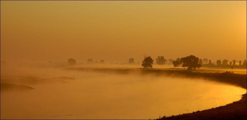 [Torgauer Land] Morgennebel über der Elbe, Kranichau