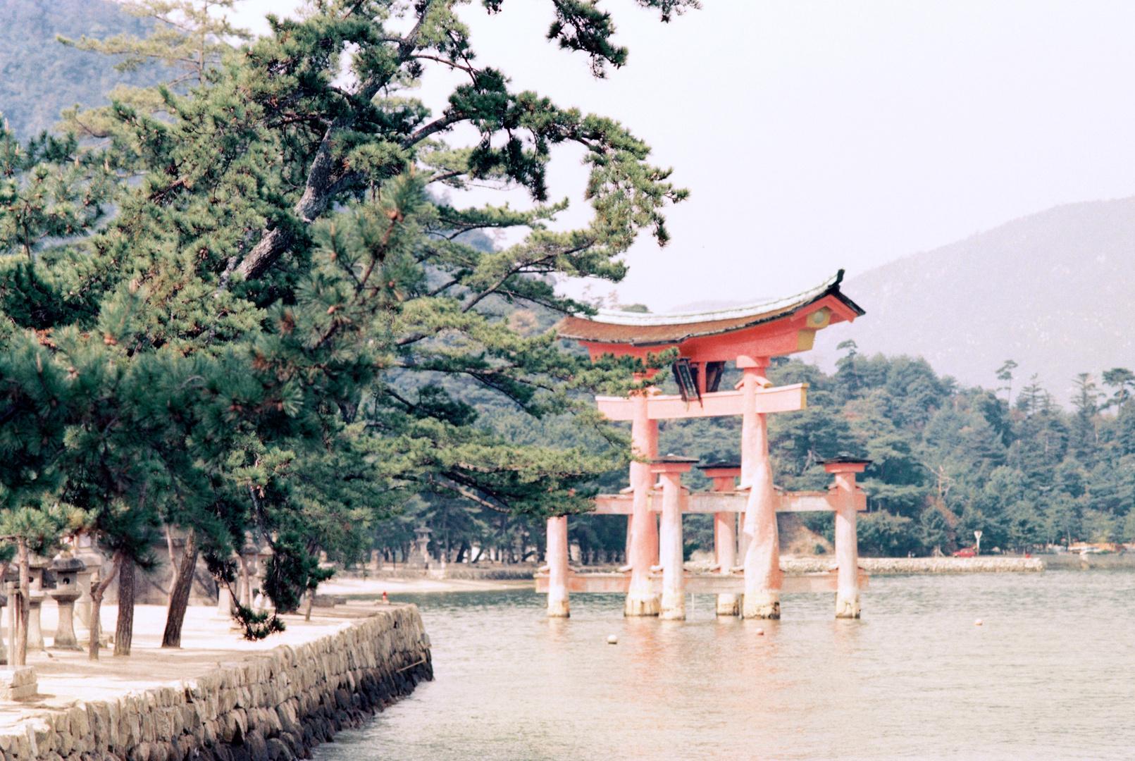 Torii-Tor vor der Insel Miyajima (7)