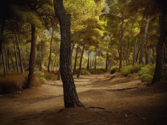 Tormentas en Mallorca