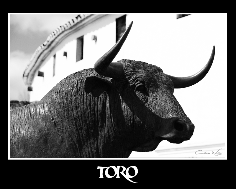 _-*Toro de Ronda*-_