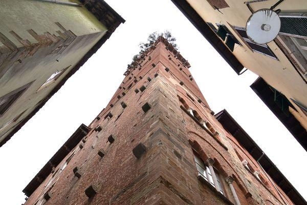 torre guiniggi
