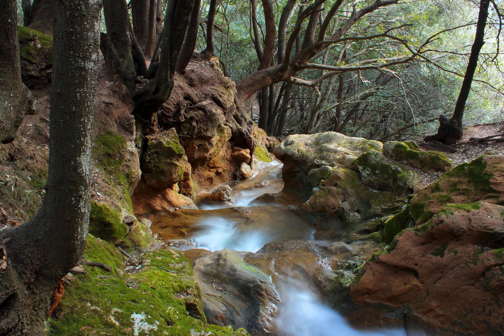 Torrent d'es Freu, Mallorca. Las últimas aguas del deshielo.