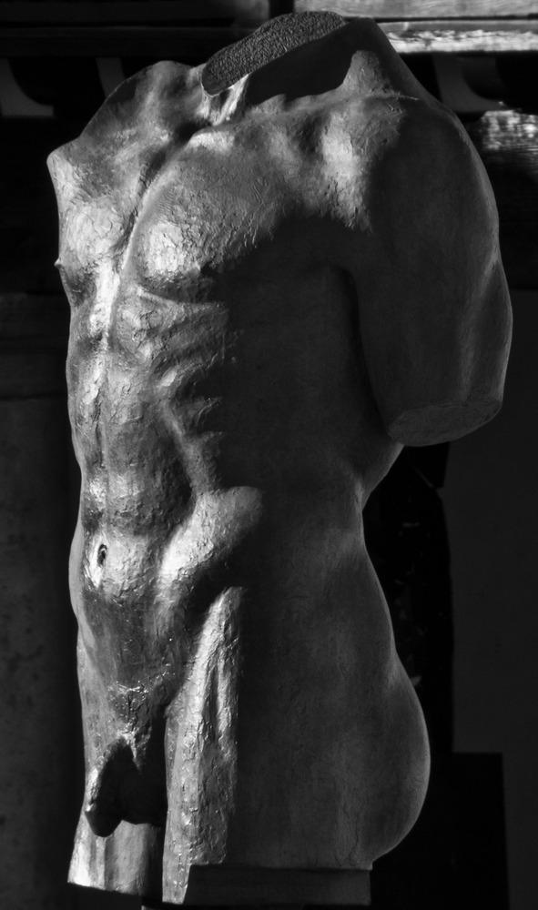 ...torso...