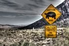 Tortoise Xing in Red Rock Canyon