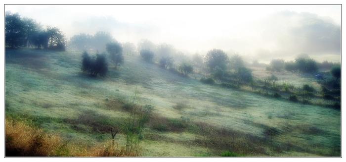 Toscana am Morgen