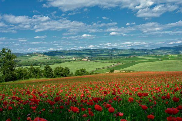 Toscana-Feeling