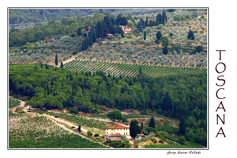 Toscana I
