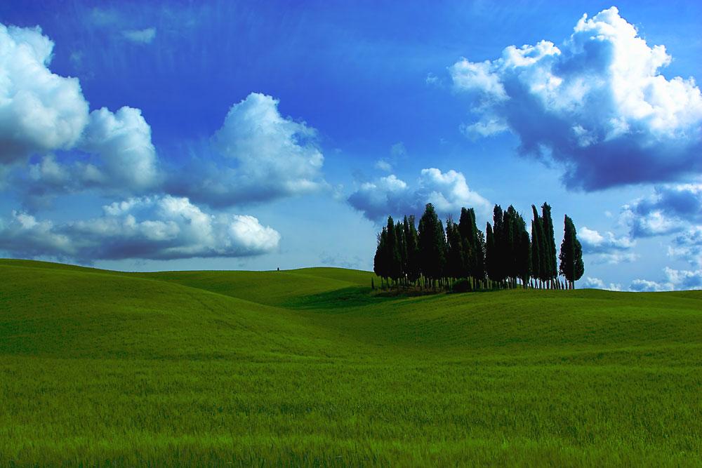..........Toscana II..........