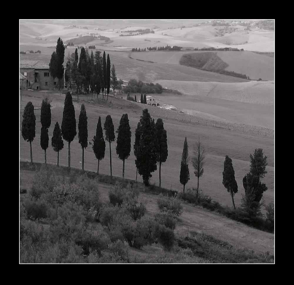 Toscana-Landschaft