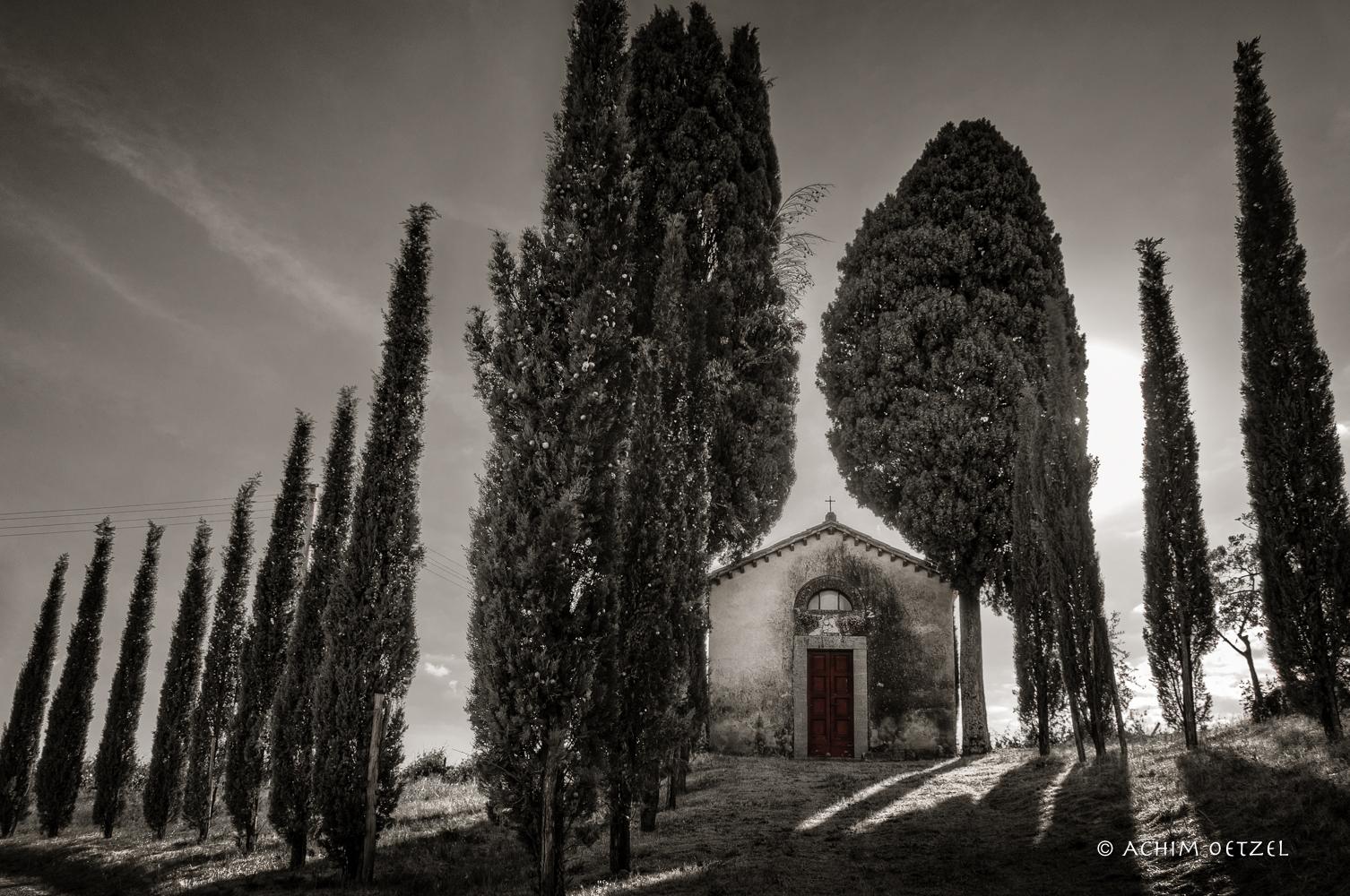 Toscana - sul bordo della strada