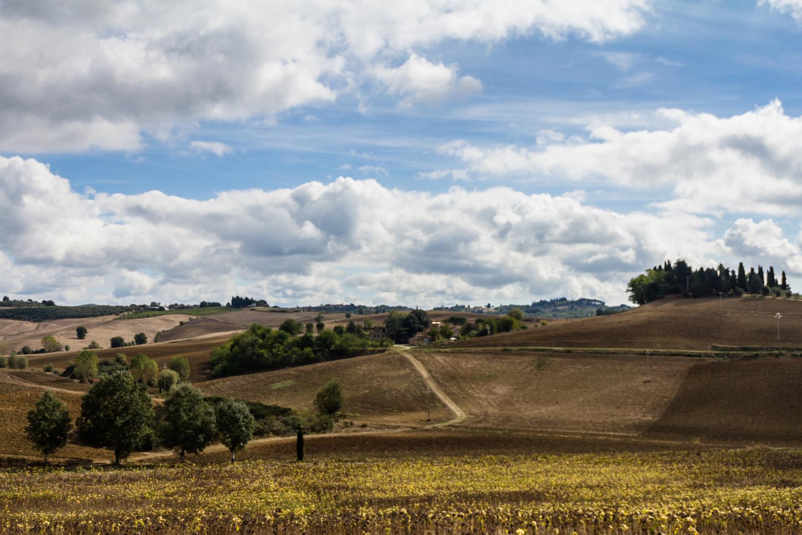 Toscanische Landschaften 2