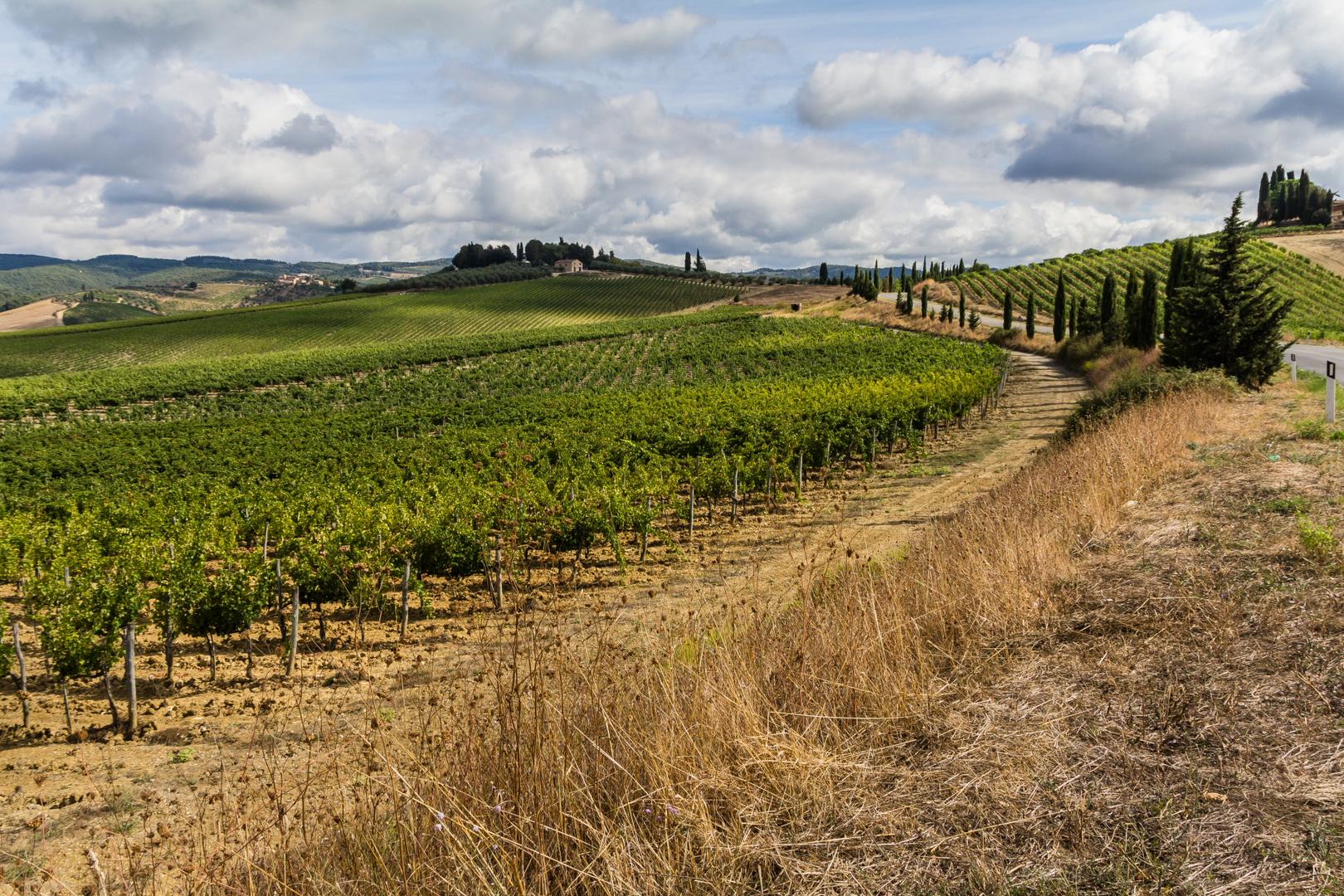 Toscanische Landschaften 3