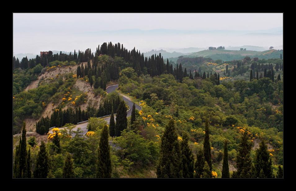 Toskana #11 - toskanische Kurven
