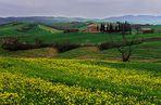 Toskana bei San Gimignano