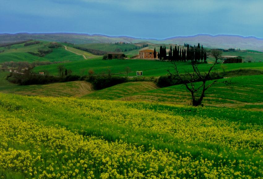 Toskana bei San Gimignano (Reload)