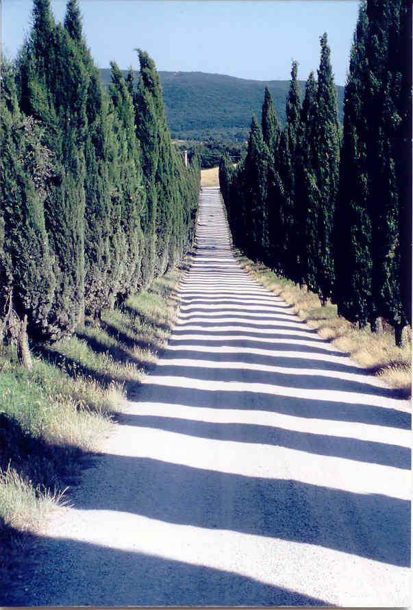 Toskana im Sommer