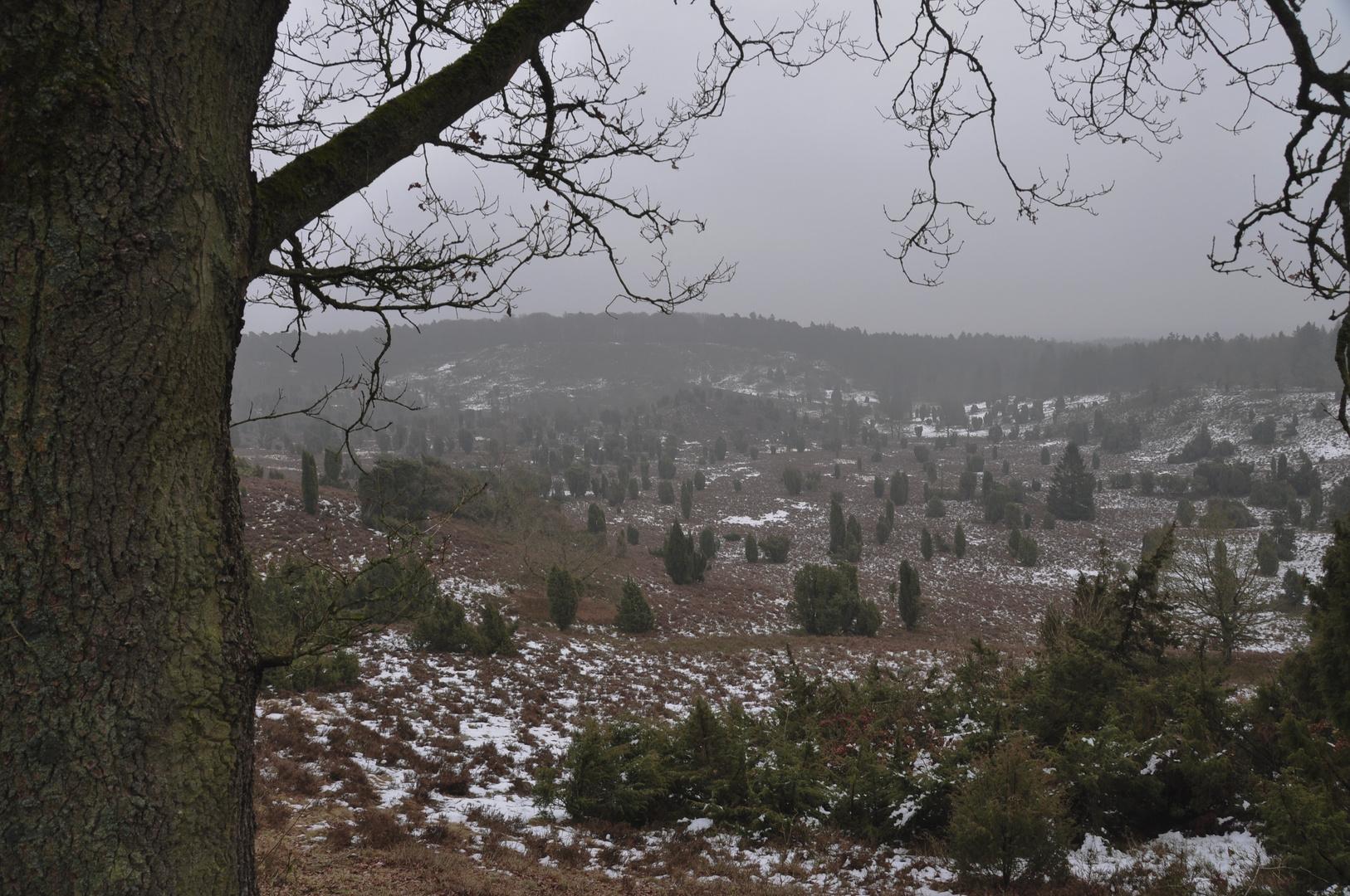Totengrund im Winter