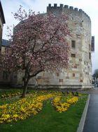 """""""Tour aux Puces"""" del XI - XII Siécle...(Città di Thionville - Moselle- F -)"""