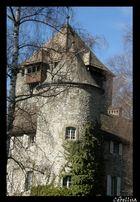 Tour du Château de Coudrée