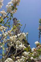 Tour Eiffel Two