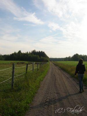 Tout droit, le chemin du paradis