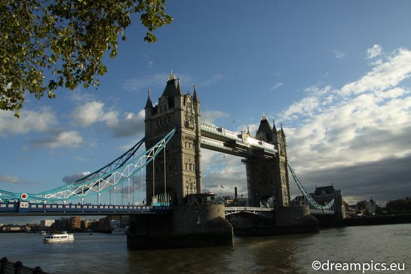 Tower Bridge #27736