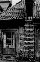 """...""""toys in the attic"""".."""