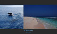tra Cielo e Mare_09