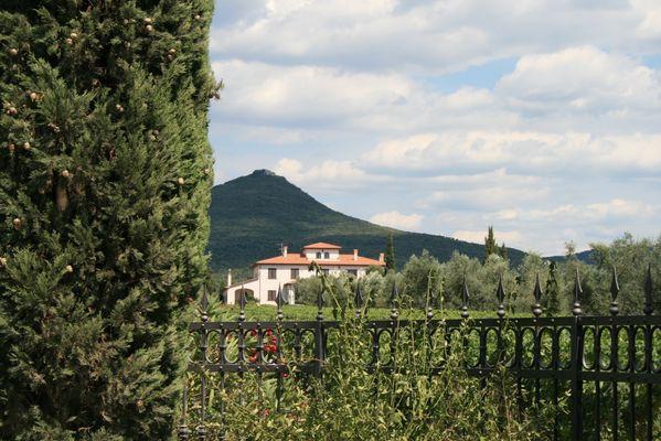 """""""Tra gli ulivi"""" im Norden der toskanischen Maremma ist von Olivenhainen und Weinbergen umgeben..."""