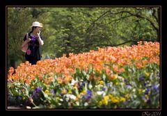 Tra i tulipani