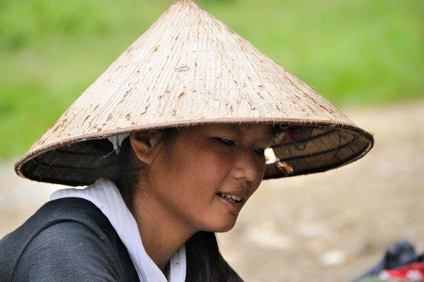 ...tra le risaie del Vietnam