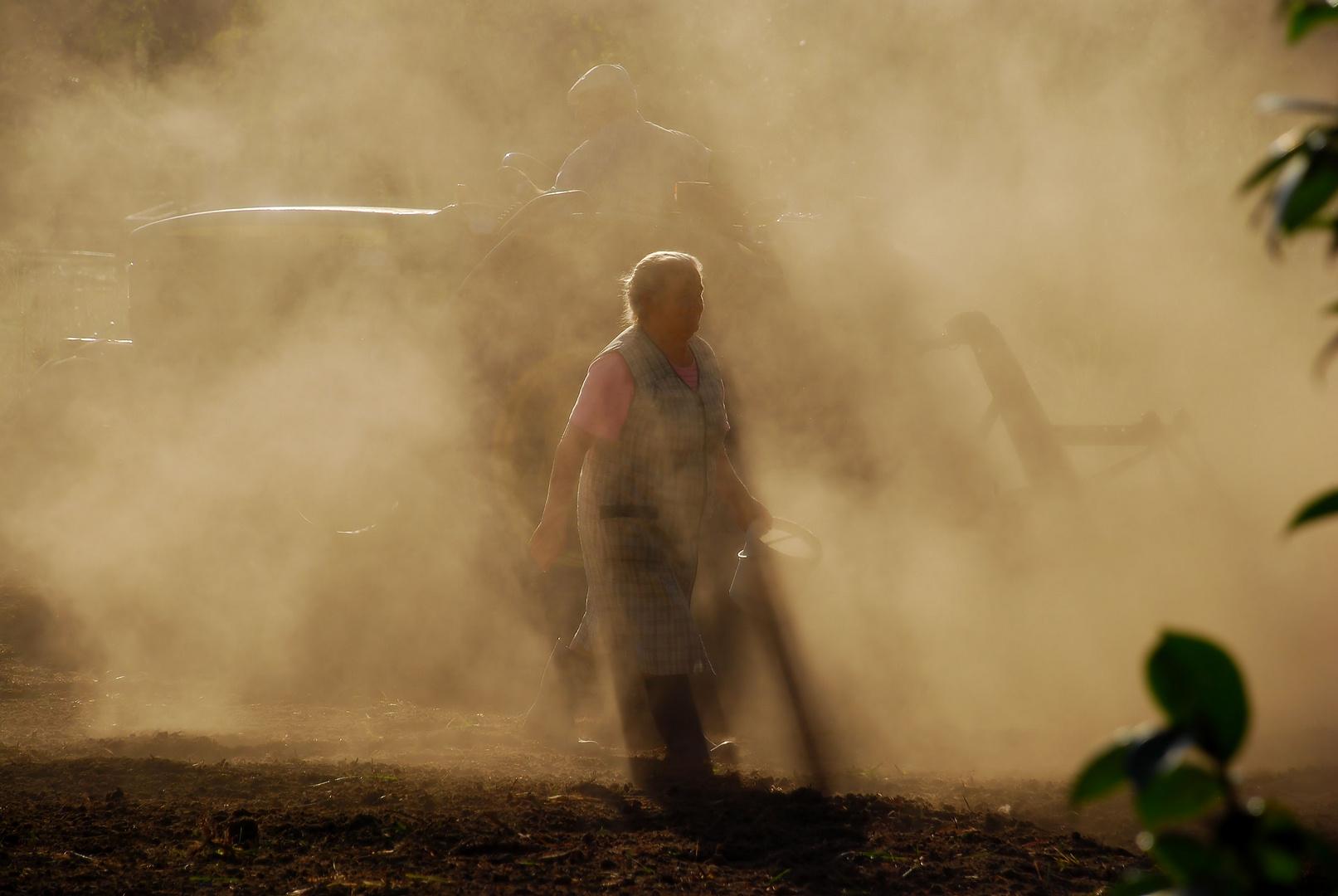 Trabalhar a terra