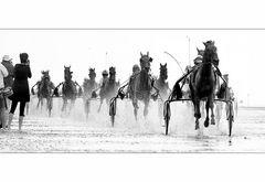 Traber, Speed und Fotografen