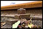 track ´n bolt