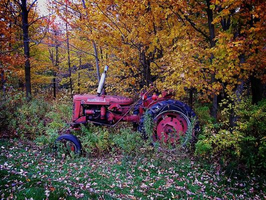 tracteur rouillant en automne
