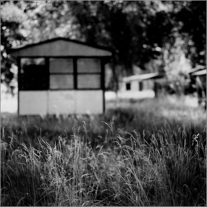 _Trädgården