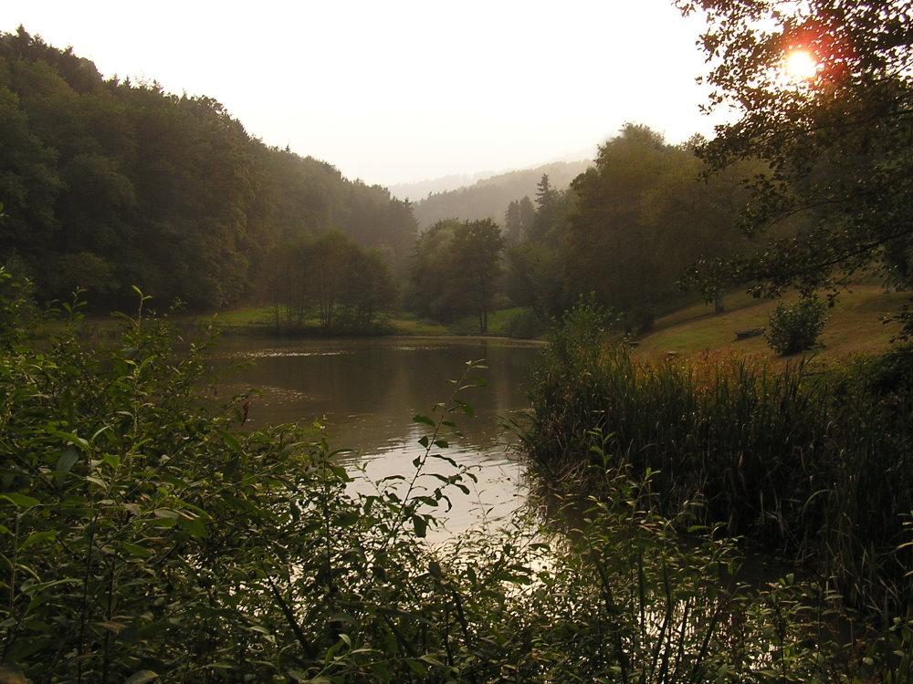 Träufelbachsee Gernsbach