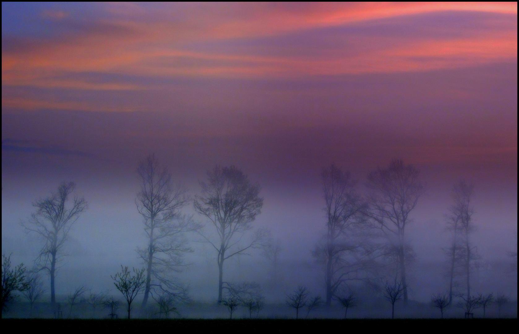 Träume in Violett - No. 2
